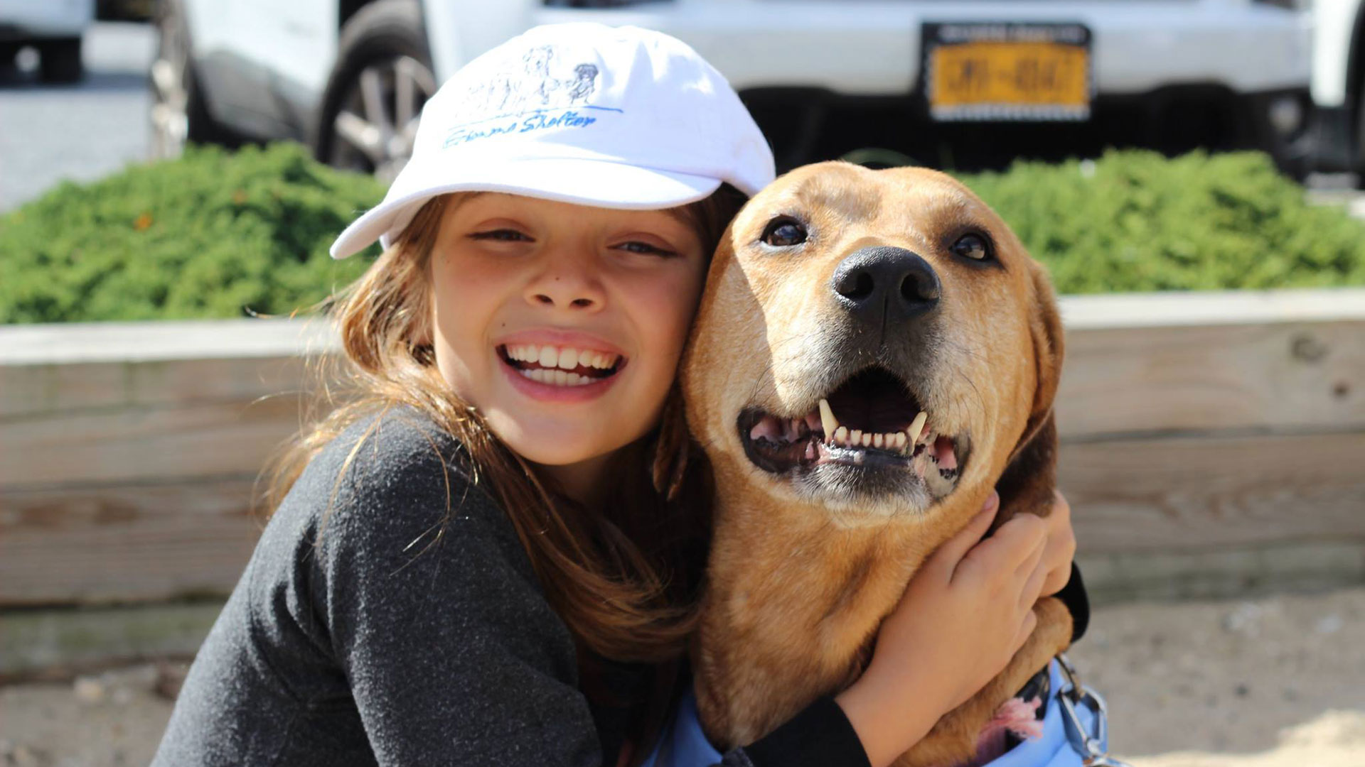 Little girl w yellow lab both smiling big :) 9